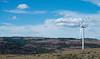 Wild Horse Wind Farm, Ellensburg WA