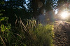Snoqualmie Valley sunset