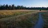 Deschutes River Trail at dawn, Central Oregon