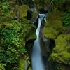 Ladder Creek Falls, Newhalem, Wa