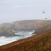 Yaquina Head Lighthouse in Morning Fog. Central Oregon Coast. Early October.