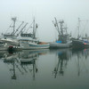 Gig Harbor Fishing Fleet in Morning Fog