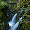 Sol Duc Falls in Fall Color, Olympic National Park, WA