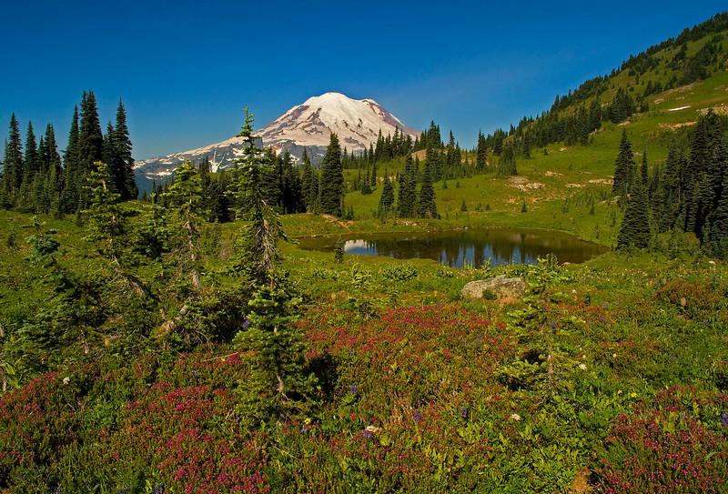 Naches Peak Loop Trail, Mount Rainier National Park, WA