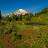 Naches Peak Loop Trail, Mount Rainier National Park, WA
