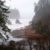 Foggy day at Ruby Beach, Olympic National Park, WA  The beach was closed due to the possibility of a tsunami caused by the Chile earthquake 02.27.10  Nothing happened!