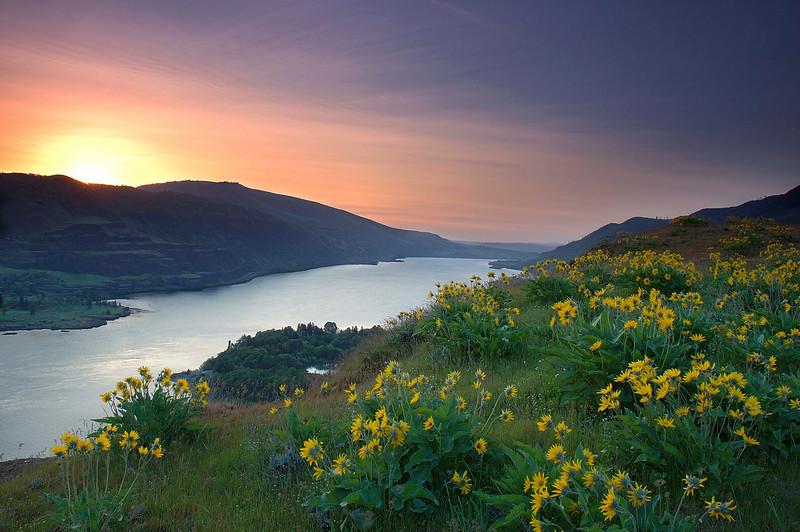 Tom McCall Preserve Sunrise, Columbia Gorge, OR