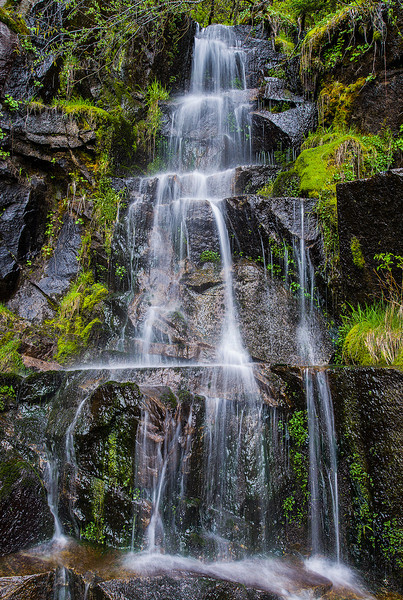 Road side waterfall next to Christine Falls, Mt. Rainier NP, Washington State