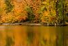 Elm Creek flowing in color