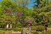 Photographer at the Japanese Garden