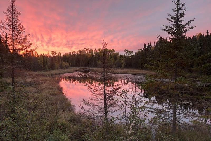 Sunrise at Assinika Creek