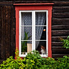 A somewhat shy resident of Røros