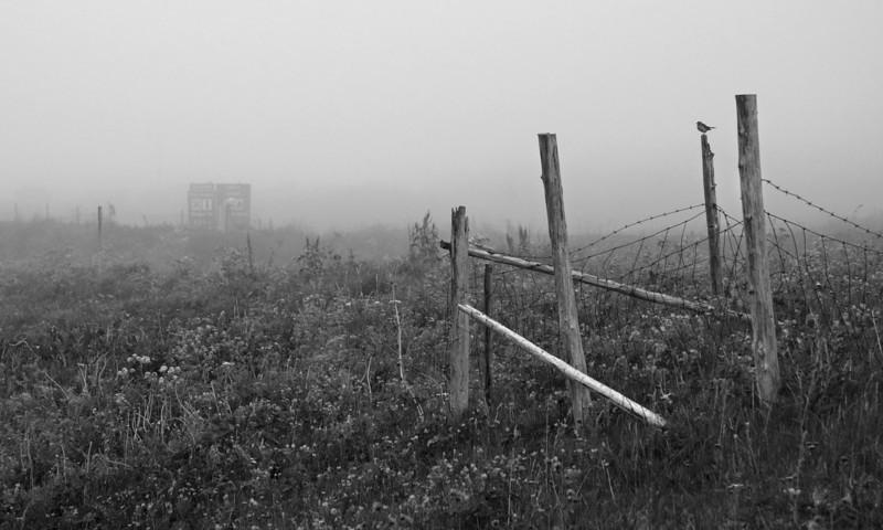 Foggy afternoon<br /> Andenes