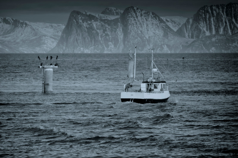 Heading out<br /> Andenes