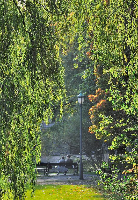 Autum in the park. St Hanshaugen, Oslo, September 2008.