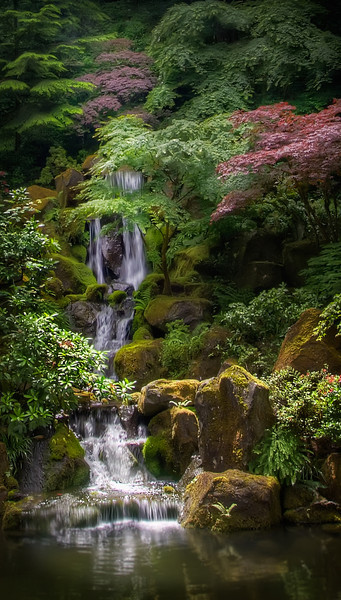 the Japanese Gardens in Portland, Oregon