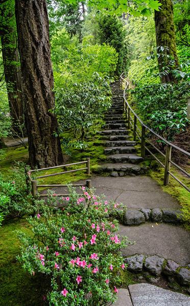Japanese Gardens in Portland, Oregon