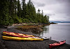 Getting ready to go kayaking around Tatoosh Island in Alaska