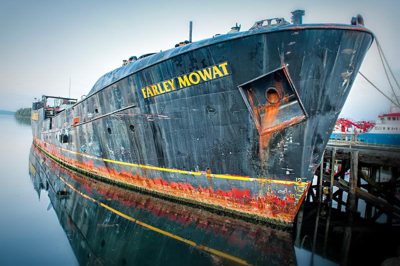 Farley Mohet