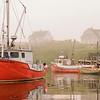 'Harbour Mist'