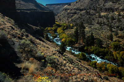 On the Steel Head Falls Loop Trail at the confluence of the Deschutes River and Wychus Creeks.