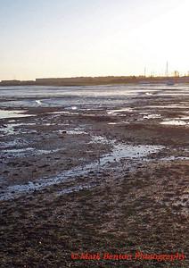 Nutbourne Marsh
