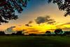 CORPS Park / Sunset  Waipio Oahu, Hawaii 10.27.13
