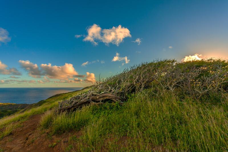 Hanauma Bay Sunset 12.22.13