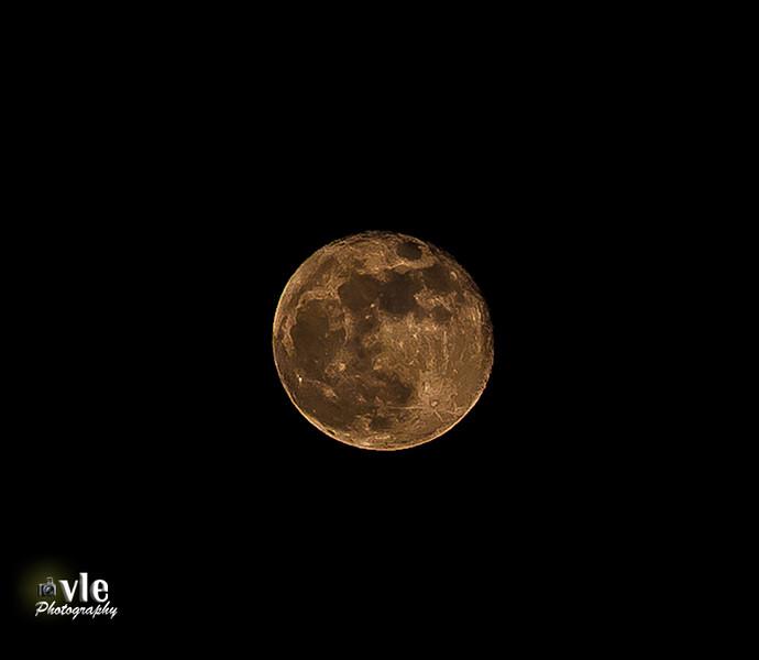 Full Moon  10.19.13