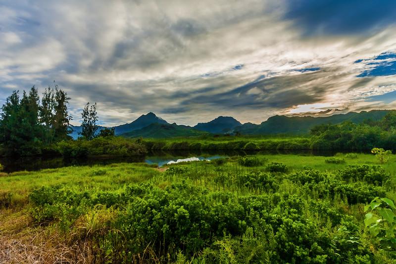 Kawainui Regional Park 2.18.14