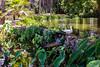 Moanalua Gardens 8.25.14