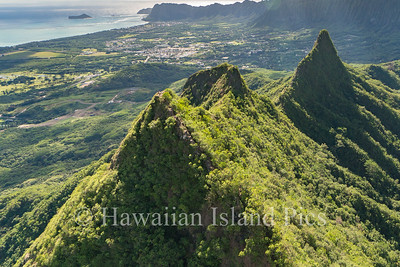 Windward Aerials-0334-2