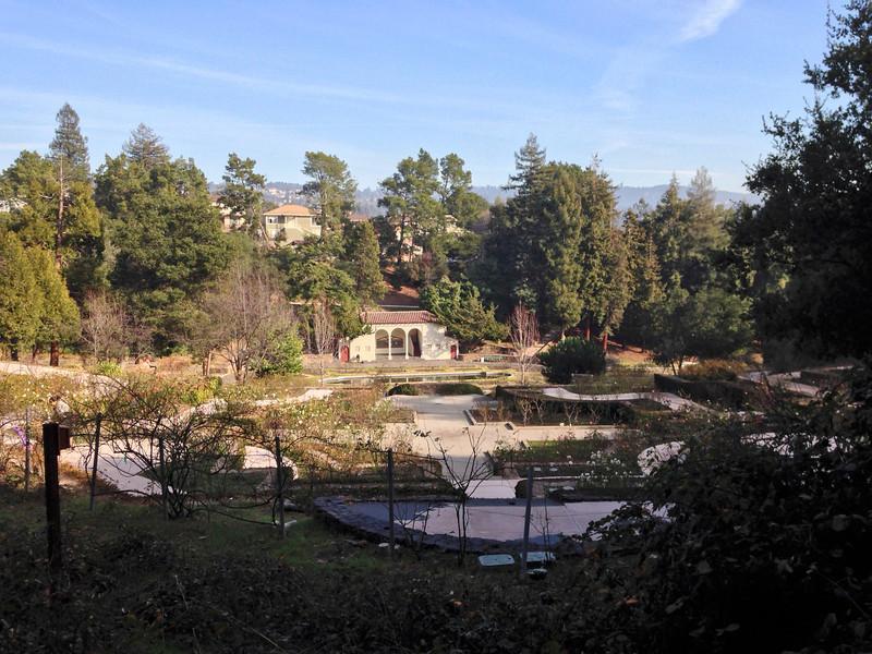 Oakland Rose Garden on New Years 2014