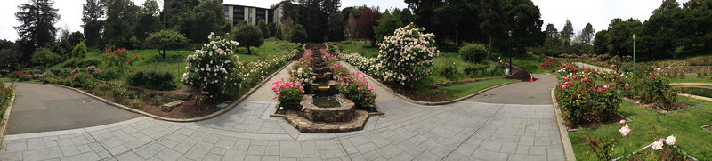 Oakland Rose Garden <br /> April 2014<br /> Oakland Rose Garden 2014-04-21 at 14-11-14