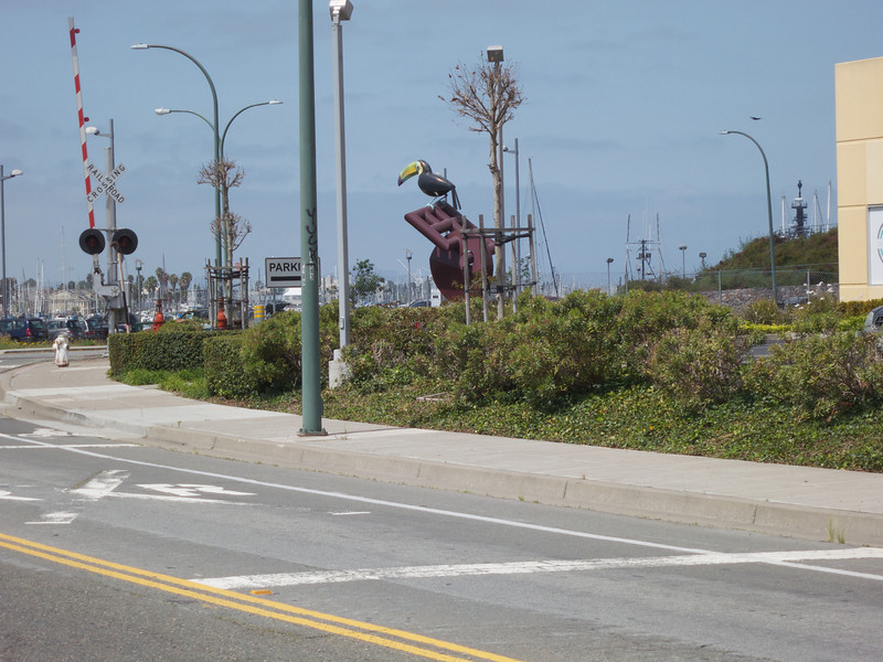Pelican and the Parking Lot<br /> Oakland  2014-04-12 at 12-31-15