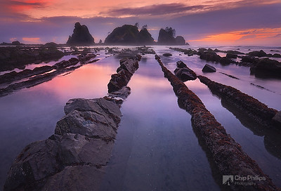 """""""Point of the Arches""""  These rock rows can be found only at certain times of the year in the  Olympic National Park backcountry, Washington State."""