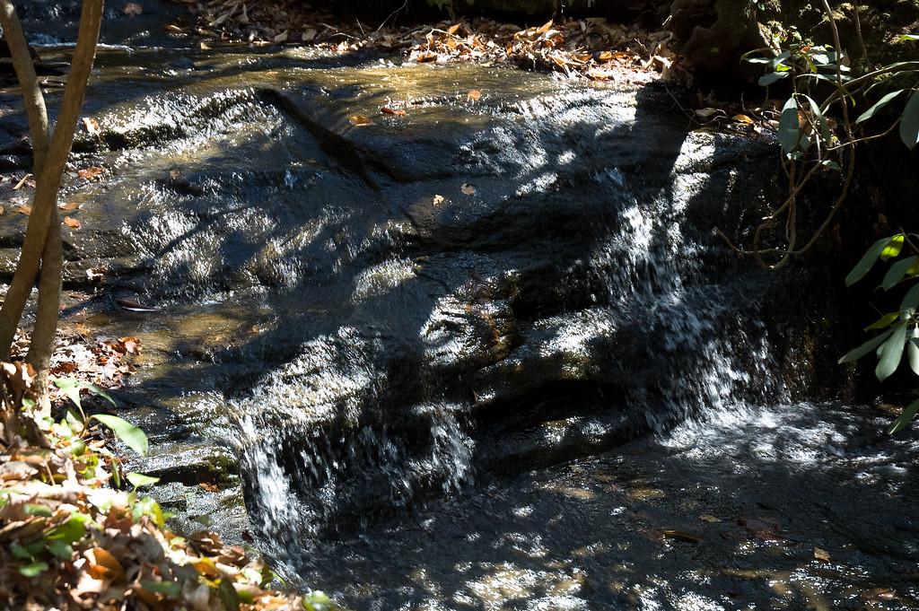 Small falls on stream near Oconee Bell flowers