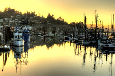 yaquina bay yellow sunrise