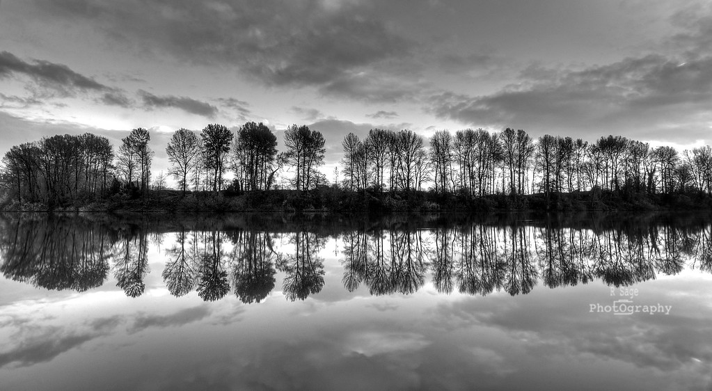 willamette reflection b&w