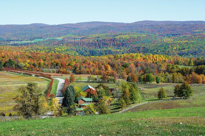 Fall Colors @ Kentuck Knob-2