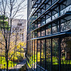 Yale Goes Modern<br /> Yale University<br /> New Haven, CT
