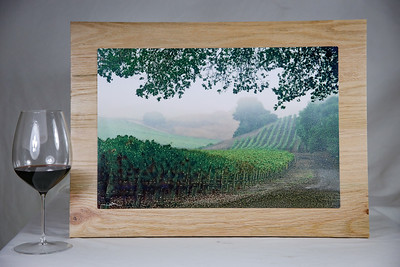 """Rolling Fog and Vines"" 18x12"" Aluminum Print on wood."