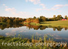 Beautiful Farm Pond with dramatic Reflections