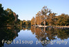 Autumn Lake Scene with Vibrant Colors