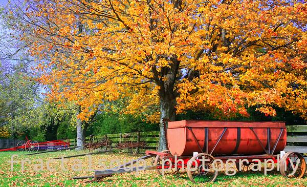 Autumn Farm Scene with Antique Farm Equipment