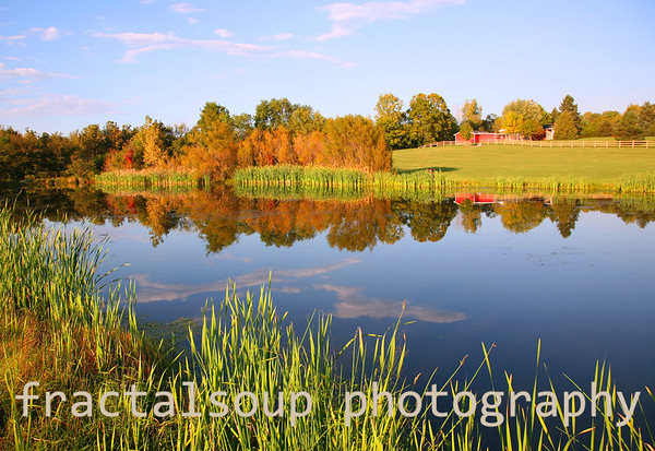 Autumn Farm Pond with Red Bard