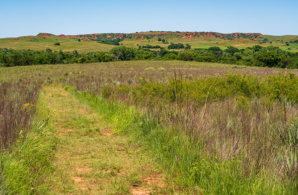 The Landscape of Washita Battlefield National Historic Site