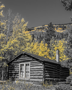 Old Barns  and Cabins Gallery