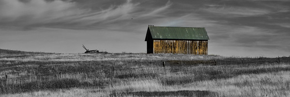 Old Barn in the Grasslands