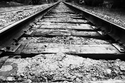 Making Tracks Through Town